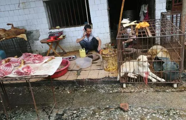 Ban Wet-Markets of China India SE-Asia before it becomes too late...